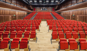 Large conference room with floor seating and raised seating