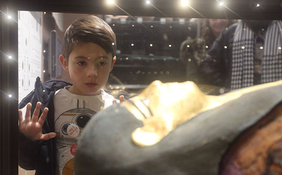 Boy looking at mummy sarcophagus