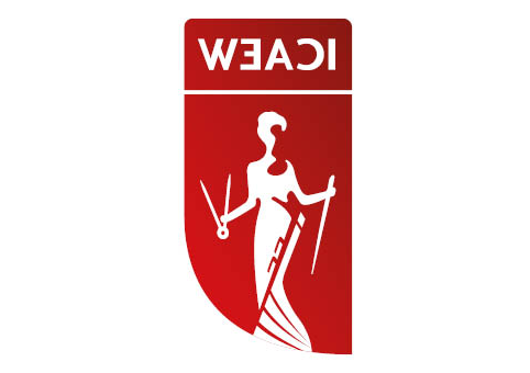 该 研究所 of Chartered Accountants in England and Wales ( ‌ICAEW) logo