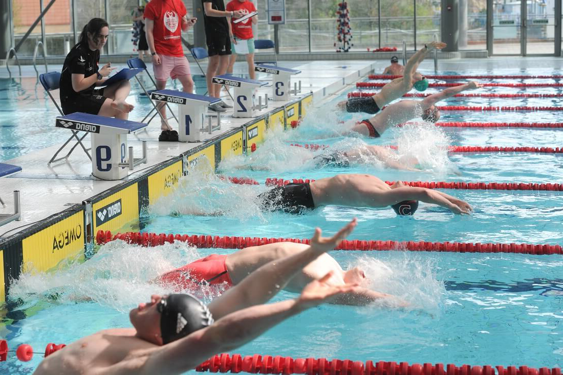 Swimmers stating race