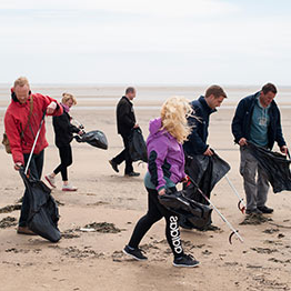 This images shows people picking litter on the beach.